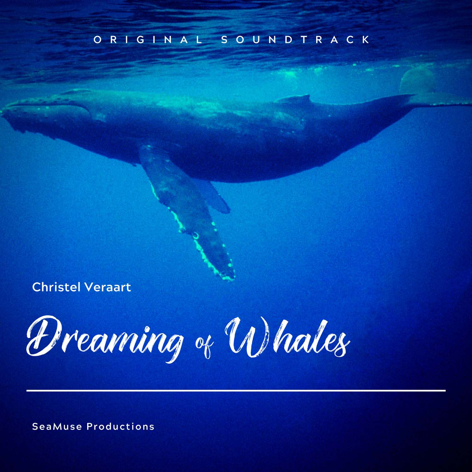 Dreaming of Whales - Soundtrack - Album Art by Christel Veraart